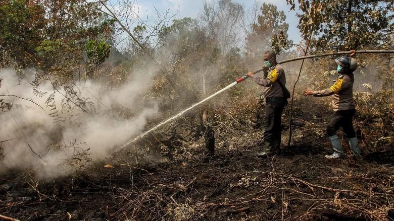 60% Lahan yang Terbakar di Aceh Bisa Dipadamkan