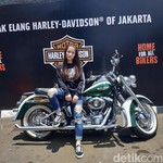 Sharran, Lady Bikers Muda Penjinak Harley-Davidson