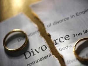 Terobsesi pada Kucing, Wanita Ini Diceraikan Suami Usai 45 Tahun Nikah