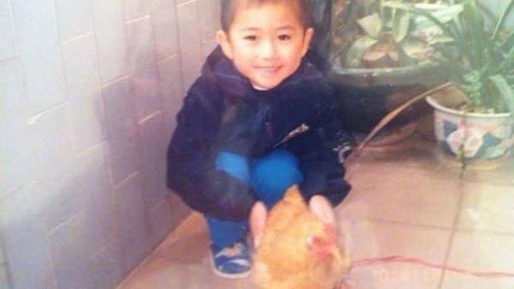 Kisah Haru Pria yang Memakan Ayam Peliharaannya Sendiri
