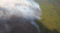 Kebakaran Lahan di Aceh Tambah Luas, Total 256 Ha Terbakar