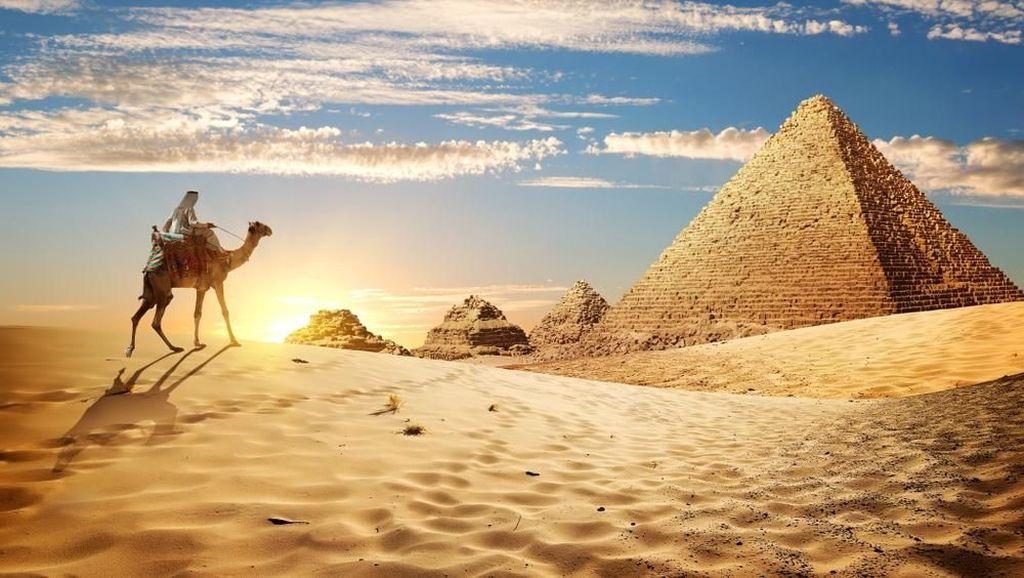 Itinerari 7 Hari Jelajahi Tanah Mesir Sampai Puas