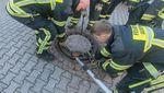 Tikus Terjepit di Saluran Air, Petugas Damkar Jerman Turun Tangan