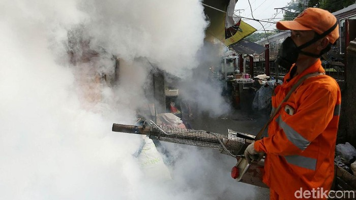 Fogging hanya bisa membasmi nyamuk dewasa, jentik tetap harus dipantau (Foto: Agung Pambudhy)