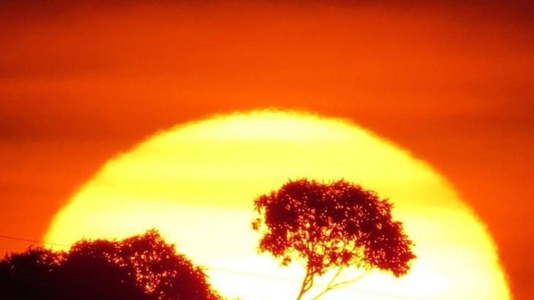 Musim Panas di Australia Tahun Ini Paling Panas Sepanjang Sejarah