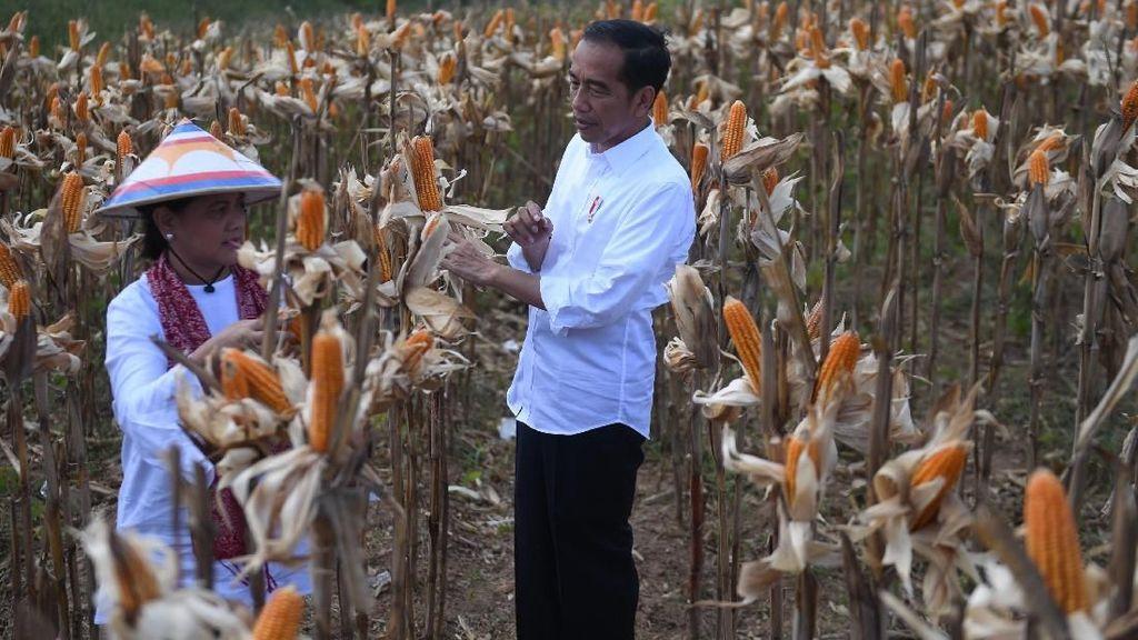 Mengentaskan Ketimpangan di Provinsi Gorontalo