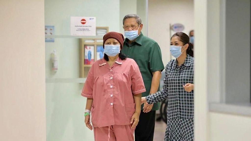 Cara Transplantasi Sumsum Tulang Bisa Sembuhkan Ani Yudhoyono