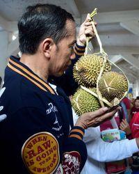 Jokowi Pakai Jaket Gambar Kucing Saat Kunker, Ini Makna di Baliknya