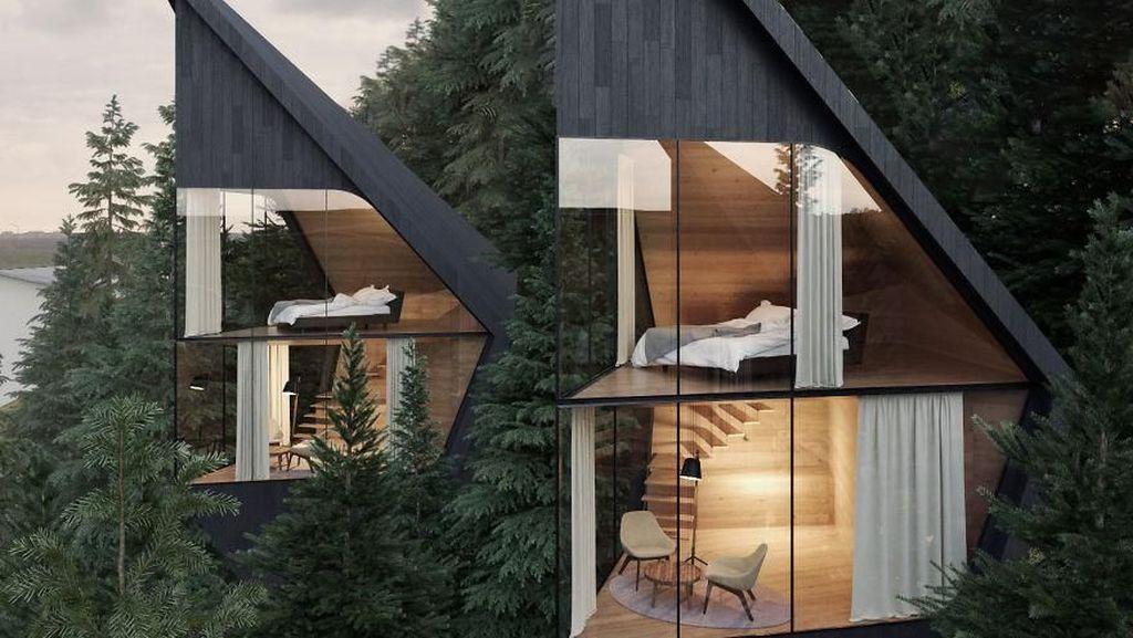 Amazing! Rumah Pohon Futuristik di Tengah Hutan