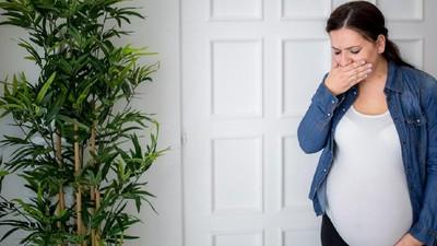 5 Tips Atasi Rasa Sensitif pada Bau-bauan di Awal Kehamilan
