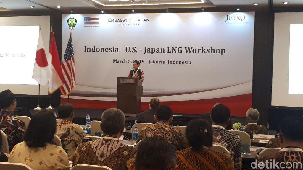 Pengusaha AS, Jepang dan RI Kumpul di HI Bahas Gas Alam Cair