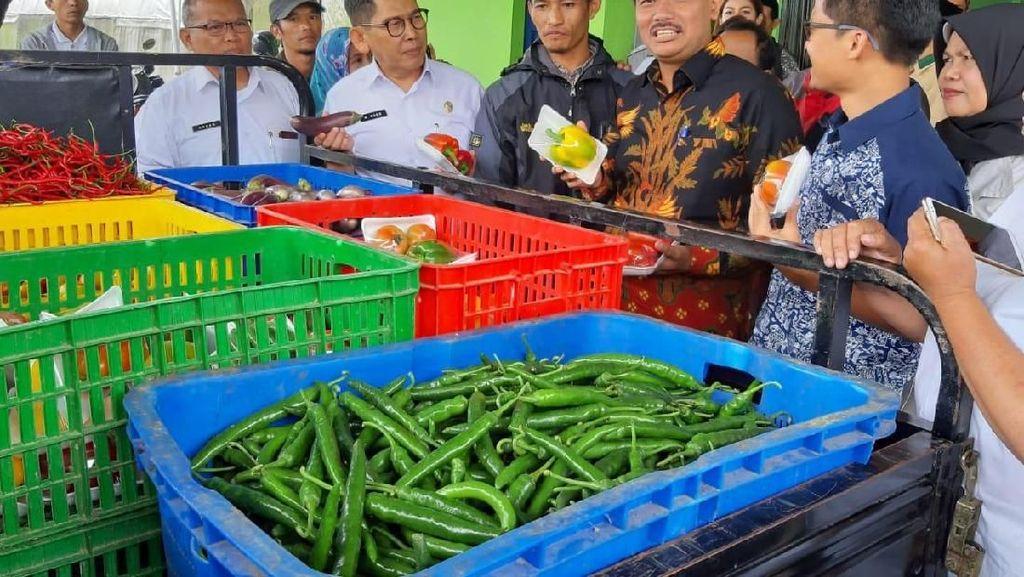 Kementan Dorong Petani Sayuran di Cianjur Naik Kelas