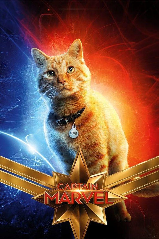 Goose the Cat jadi salah satu idola di film Captain Marvel. Dok. Marvel