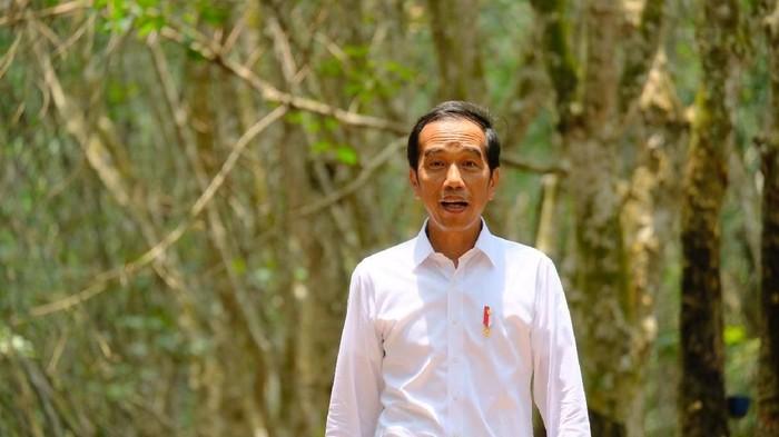 Presiden Joko Widodo (Jokowi) menggelar pertemuan dengan para petani karet di Sumatera Selatan. Salah seorang petani bernama Farid Bani Adam mendoakan Jokowi kembali menjabat sebagai presiden.