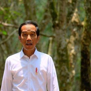 Menang Pilpres 2019, Jokowi Effect Masih Ada?