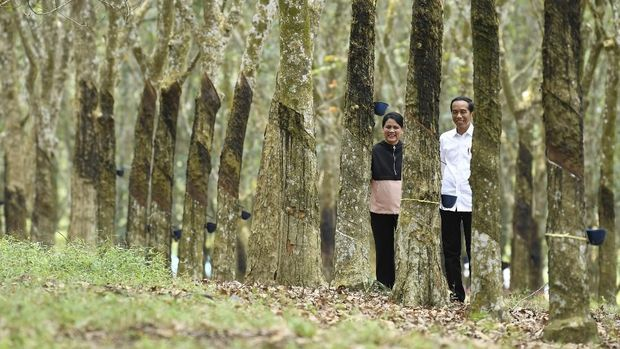 Romantisme 'Winter Sonata' ala Jokowi-Iriana di Kebun Karet