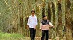 Momen Mesra Jokowi-Iriana Gandengan di Hutan Karet