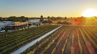 Swan Valley adalah kawasan agrowisata penghasil anggur di Australia Barat, 30 menit dari Perth. Wisatawan bisa mencoba wine, coklat dan madu (Tourism Western Australia)
