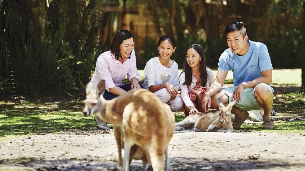 Hewan dan Bunga Khas Australia Barat, Serta Tempat Untuk Melihatnya