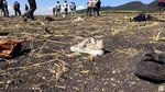 Penampakan Lokasi Jatuhnya Pesawat MAX 8 Ethiopian Airlines