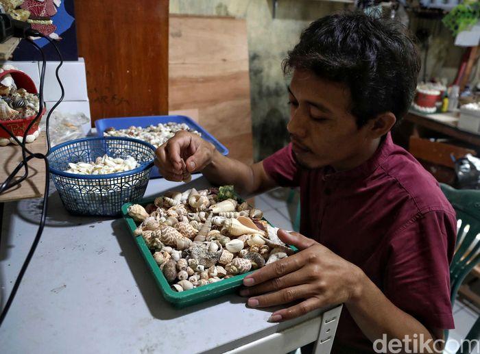 Seorang perajin kerang bernama Halim (31) nampak sibuk memilah kulit kerang yang akan digunakannya untuk membuat souvenir khas Pulau Tidung, Kepulauan Seribu.