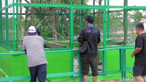 Banyak wisatawan datang karena penasaran. Kampung Reklamasi Aik Jangkang ini pun cukup menarik dikunjungi, meski belum sepenuhnya rampung. (Deni Wahyono/detikTravel)