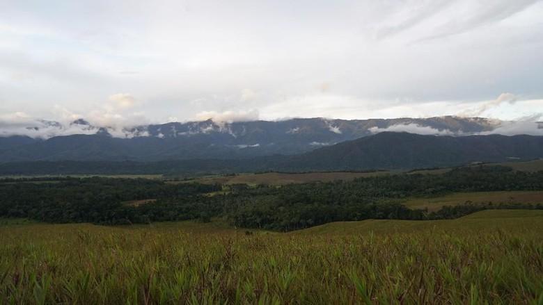 Bukit Sontiri di Kabupaten Tambrauw (Bonauli/detikcom)