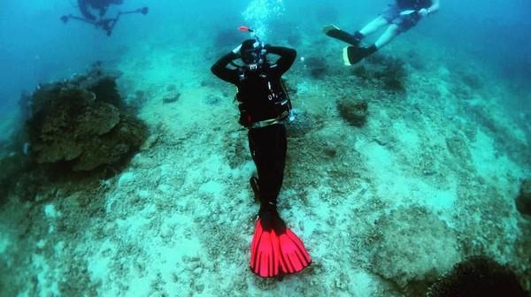 Diving juga jadi salah satu aktivitas favorit Pangeran Abdul Mateen (Instagram/tmski)