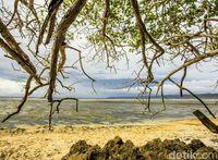 Pantai-pantai di Taman Nasional Alas Purwoi