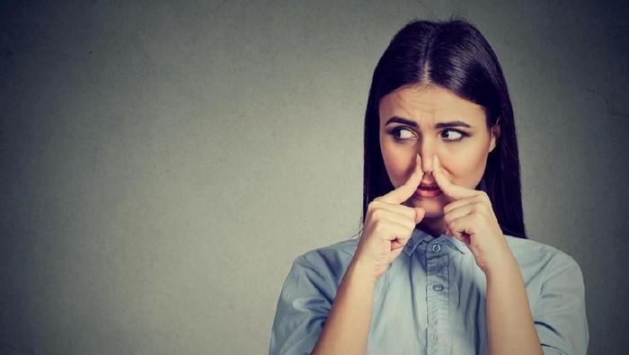 Bau beberapa bagian tubuh yang nagih untuk diciumi. Foto: iStock