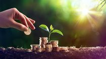Cara Tepat Menyimpan Dana Darurat agar Keuangan Keluarga Aman