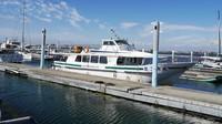 Area marina yacht yang menjadi titik awal dan akhir wisata PengFu Sightseeing Yacht (Kurnia/detikcom)