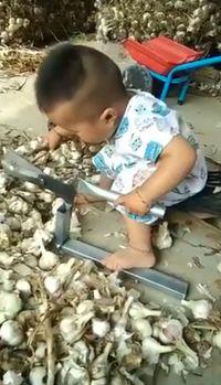 Permalink to Sering Bantu Orang Tuanya, Dua Bocah Cilik Ini Jago Potong Akar Bawang