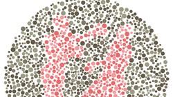 Untuk bisa melewati tes kamu membutuhkan fokus dan fungsi penglihatan yang normal. Kurang satu saja maka kamu akan kesulitan melihat siluet yang tersembunyi.