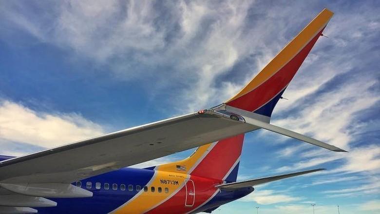 2 Pilot AS Laporkan Insiden Nose-Down Saat Terbangkan Boeing 737 MAX 8