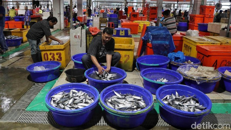 Pasar Ikan Modern (PIM) Muara Baru (Pradita Utama/detikcom)