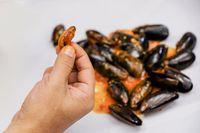 Di Muara Karang Bisa Jajan Seafood Segar dan Enak di 5 Resto Ini