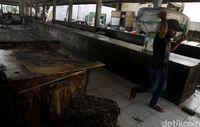 Tempat Pelelangan Ikan di Labuan Bajo Mau Tiru Tsukiji