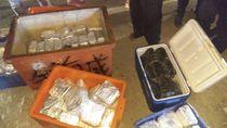 BNN Sita 106 Bungkus Narkotika dalam 5 Box Ikan di Kalbar