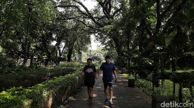 Taman Suropati (Pradita Utama/detikcom)