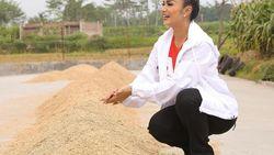 Pamer Foto Kartini-an, Krisdayanti Dipuji Adik Ahok