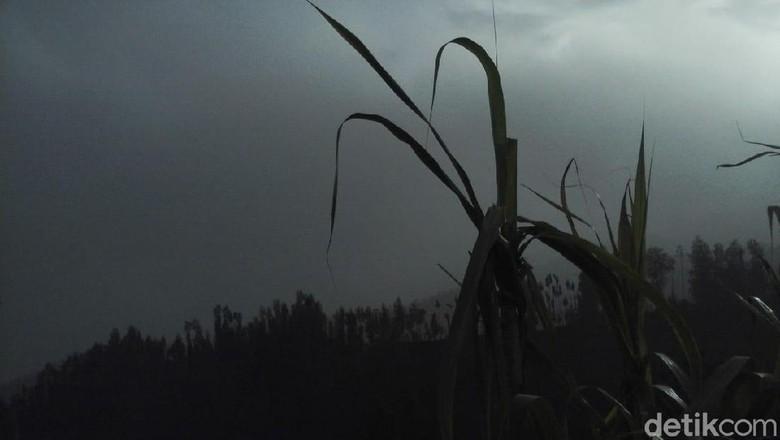Abu Vulkanik Bromo Mengarah ke Pasuruan, Warga Butuh Masker