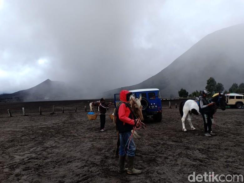 Bromo Semburkan Abu Vulkanik, Ojek Kuda Mengeluh Pendapatan Turun