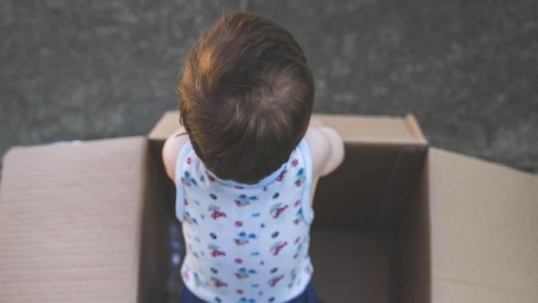 Ilustrasi bayi dalam kardus/ Foto: iStock