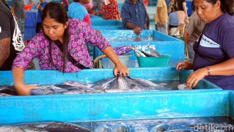 Tempat Pemasaran Ikan Higienis Bitung (Wahyu/detikcom)