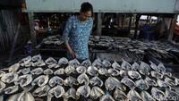 Ikan-ikan kering tersebut nantinya akan di jual ke pengepul di Labuan Bajo.