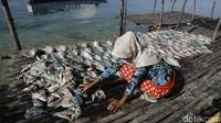 Hasil tangkapan laut itu kemudian dijual ke warga di luar pulau tersebut. Namun, ada pula warga yang mengolah hasil tangkapan laut itu menjadi ikan asin. Belakangan, usaha tersebut makin menjanjikan.