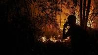 Keringnya pepohonan akibat cuaca panas dan diperparah dengan kencangnya angin membuat api cepat menjalar sehingga menyulitkan regu pemadam untuk melakukan pemadaman di lokasi yang terbakar. ANTARA FOTO/Rony Muharrman.