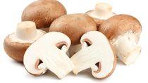7 Manfaat Jamur untuk Kesehatan Tubuh