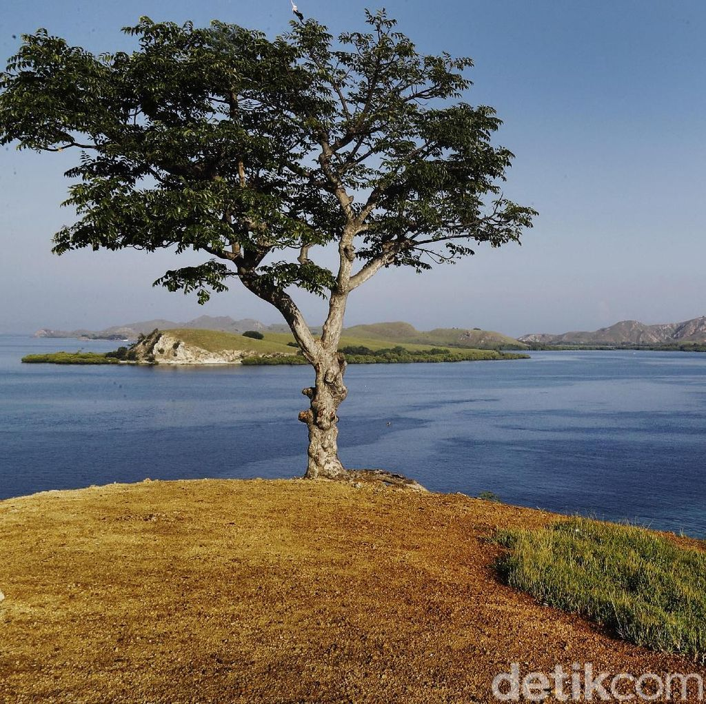 Panorama Pulau Messah yang Memanjakan Mata